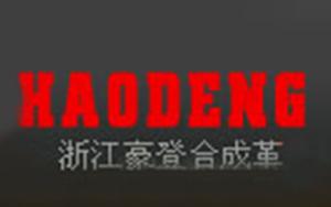 浙江豪登合成革有限公司